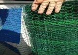 """0.5mm*1/2 """"電流を通された六角形の金網の塀及びPVC上塗を施してある六角形の金網の網の塀"""