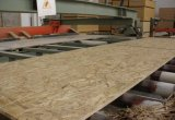 Orienté vers l'Melmine colle Standard Board-BSF