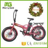 20 인치 휴대용 Foldable 바닷가 눈 Burshless 후방 모터를 가진 전기 자전거 E 자전거