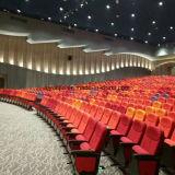 Buntes Theater-Möbel-Auditorium sitzt Yj1001f vor