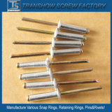 3.2*12mm geöffneter Typ Vorhang-Niet-Stahl
