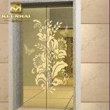 Porte décorative enduite d'ascenseur d'acier inoxydable de couleur de PVD