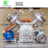 De corrosieve Compressor van het Diafragma van de Hoge druk van het Gas van het Gas Zeldzame
