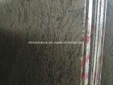 Marmo di legno nero della Cina per i progetti delle mattonelle