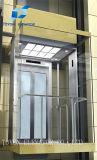 De Panoramische Lift van Toyon voor Sightseeing voor de Bouw Commerical en Lift