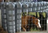 Deer Horse Sheep Filed Fence OF Galvanized Wire Cattle Fencing export to of Australia, new Zealand, the USA