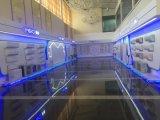 Supermercado comercial freezer