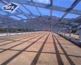 Дома слоя цыпленка директора 4 яруса структура Prefab стальная для птицефермы Танзании