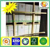 Documento di derivazione bianco non rivestito di formato dello strato