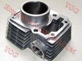 La motocicleta parte cilindro del kit del cilindro el mejor para Cbf150