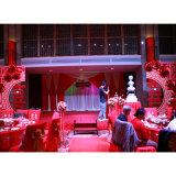 Modernes justierbares Aluminiumrohr drapieren Hochzeits-Zeremonie-Hintergrund-Miete