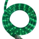 220V LED 방수 밧줄 빛 검정 빛 LED 밧줄