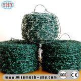 電流を通され、PVCによって塗られるフィールドは有刺鉄線を保護する