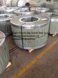 Bande d'acier inoxydable de qualité (AISI316/316L)