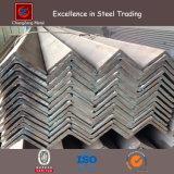 Ferro di angolo d'acciaio in maniera fidata di prezzi di fabbrica con il campione (CZ-A31)