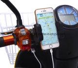 كهربائيّة ثلاثة 3 عجلة تسليم درّاجة ناريّة لأنّ عمليّة بيع في الصين