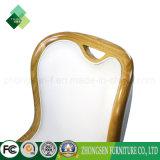 中国の工場販売現代簡単な様式の高く背部椅子(ZSC-01)