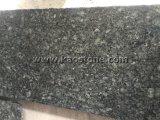 China pulido de granito verde de la mariposa para encimera/títulos