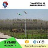 30W LED Straßenlaterne-Garten-Lampe/Lightaaa004