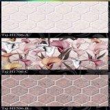 Hermosa decoración de azulejos de pared de inyección de tinta (Tsj-H1706)