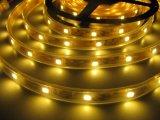 Indicatore luminoso impermeabile flessibile della corda dell'indicatore luminoso di natale della striscia del LED LED