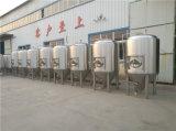 Pianta luminosa della strumentazione della fabbrica di birra del serbatoio della birra e di fermentazione dell'acciaio inossidabile micro