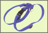 Kragen-Bleiarten und Harness-3