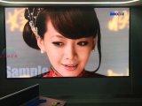 LEIDENE HD van de Fabrikant P3/P4/P5/P6 van China goot de Binnen VideoVertoning van het Scherm met Matrijs 500X1000mm