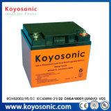 Rasenmäher-Batterie 12V des Lithium-40ah der Zellen-40ah 24V