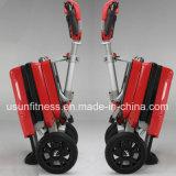 Три колеса складные электрические мобильности для скутера скутер электрический велосипед