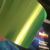 透過キャンデーの蛍光緑の粉のコーティング