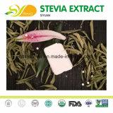 판매를 위한 성격 감미료 Stevioside 스테비아 설탕