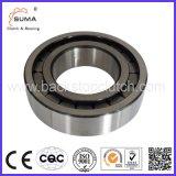 Roulement à rouleaux cylindriques Multirow (SL14)