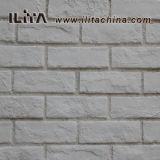 Искусственный камень культуры искусства кирпича материал (ИЛД-01)