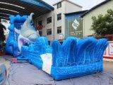 Deslizamento de água inflável de tubarão gigante para o parque de diversões (CHSL577)
