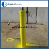 """10 """" altos martillos de la presión de aire DTH"""
