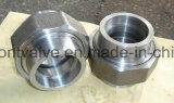 위조된 Steel Threaded 또는 Socket Welded Union