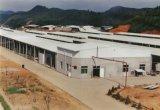 Bajo costo pre que dirige el almacén de acero de la estructura del metal