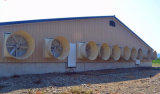 Casa de aves de corral de ganado del ventilador Ventilador de escape de la casa