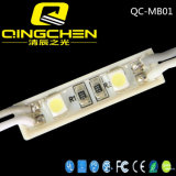 Módulos ligeros a todo color de la visualización LED de la inyección blanca