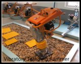 Benzin-Vibrationsabdämmen-Ramme mit Motor Gyt-77r Robin-Eh12