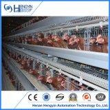 Gaiola automática da galinha para a exploração agrícola de Poutry