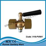 Valvola del rubinetto del manometro (V18-PV001)
