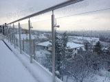 Het hoogwaardige Traliewerk van het Roestvrij staal van het Traliewerk van het Balkon van het Roestvrij staal