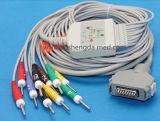 Máquina ultra-sônica do varredor baseado no PC do ultra-som do equipamento de 15 polegadas