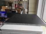Cfrt PP PE Panel de nido de abeja para el cuerpo de la carretilla y decoración.