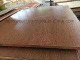 El concreto común de la base moldea la madera contrachapada