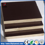 Material de construcción resistente al agua antideslizamiento Combi de madera de contrachapado de chopo WBP
