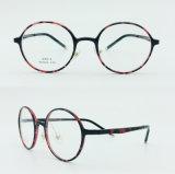 auf lager Plastikstahlform-neue Entwurfs-Licht-Brillen Eyewear in den optischen Rahmen