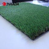 عامّة - كثافة مرج سكنيّة يرتّب عشب